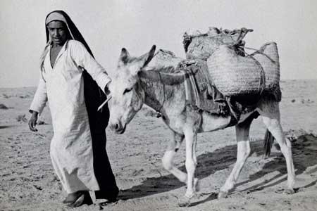 Saudi Man Leading Donkey