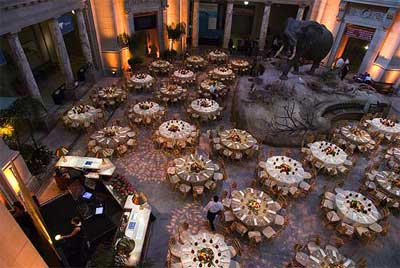 Rotunda of the National Museum of Natural History