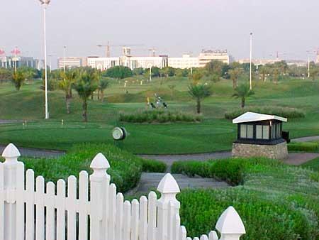 More Golfing