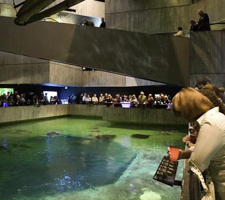 ASC Baltimore Aquarium Event, Part 7 (3)