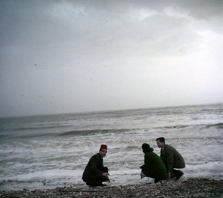 At the Dead Sea, 1953