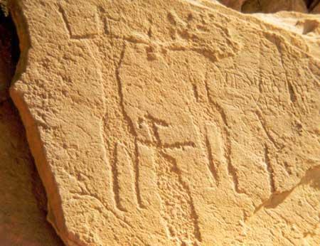 Petroglyphs (1)
