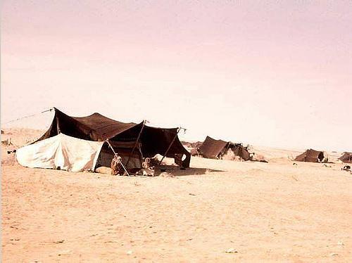 Saudi Arabia 1960s (5)