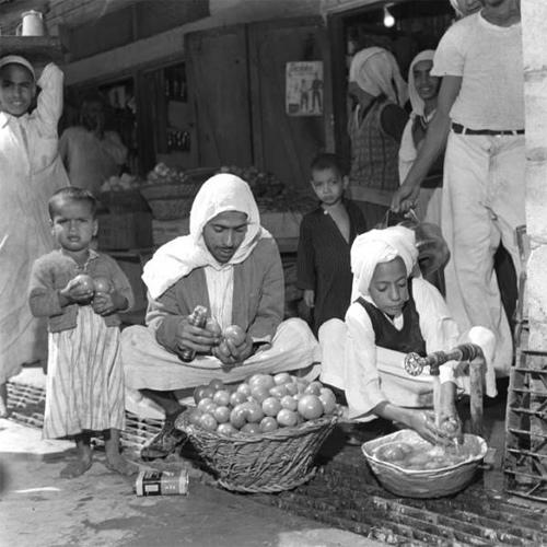 Old Al-Hasa (2)