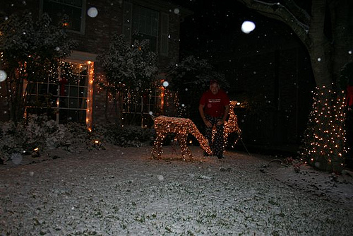 Snow in Houston (7)