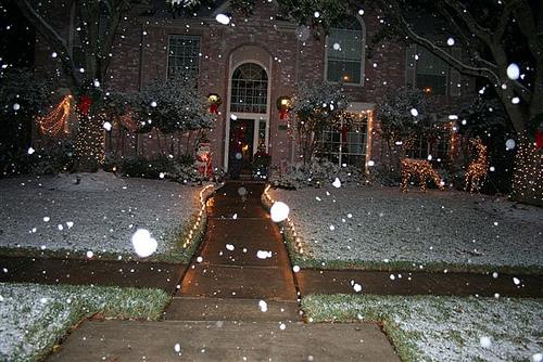 Snow in Houston (8)