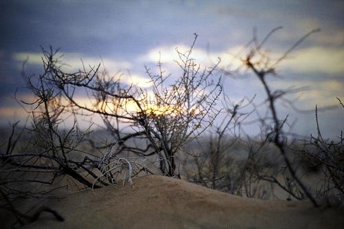Sunset in Abqaiq