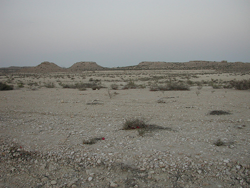 Jebels in Dhahran (1)