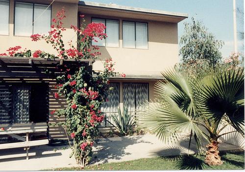 Tief & Turban House