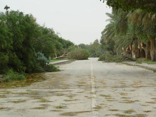 Abqaiq Storm Damage (2)