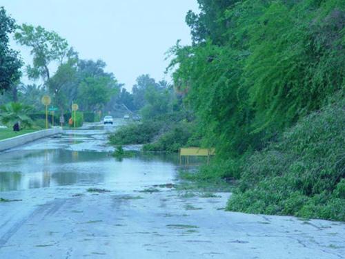 Abqaiq Storm Damage (7)
