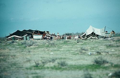 Bedouin Camp (1)
