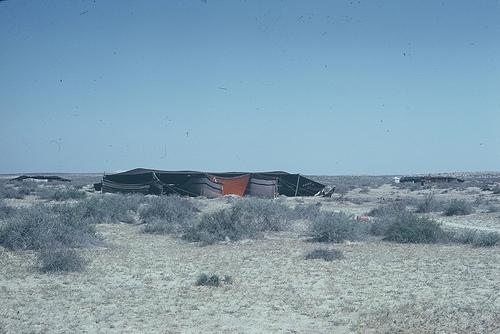 Bedouin Camp (2)