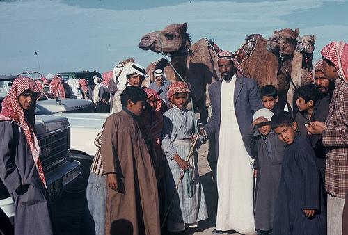 Camel Races Near Manifa (2)