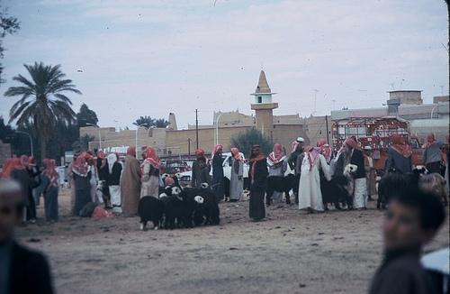 Village in Qasim region (2)