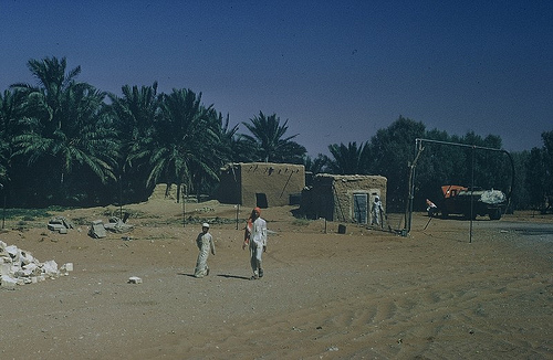 Village in Qasim region (3)