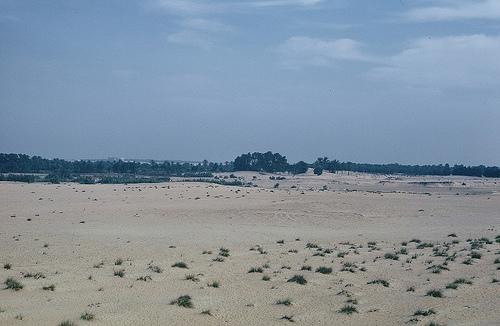 Near Rabigh