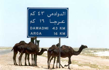 Heading Towards Dawadmi