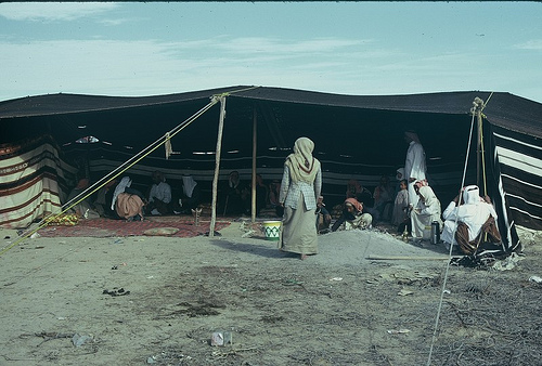 Bedouin Camp (1)