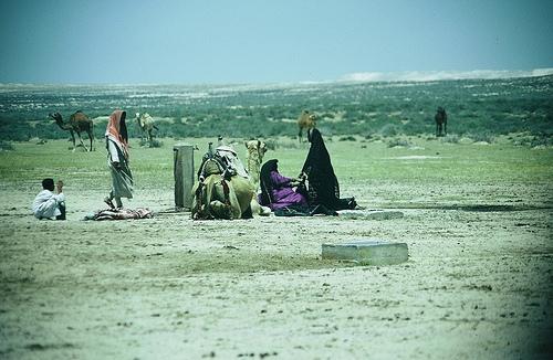 Near Yabrin (6)