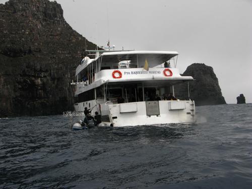 Diving Galapagos! (17)
