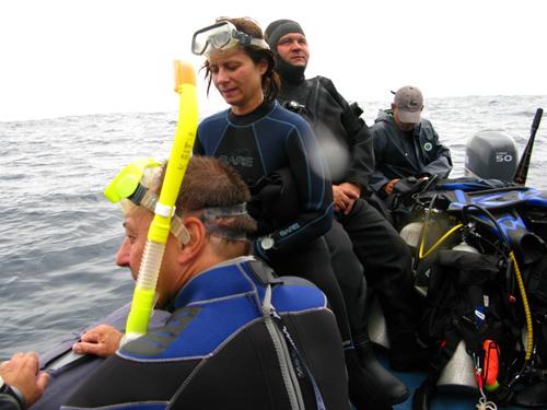 Diving Galapagos! (19)