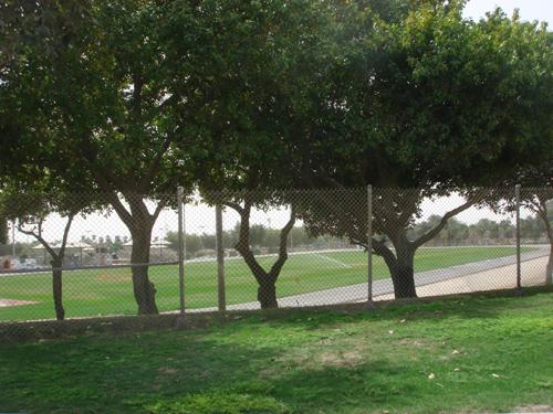 Dhahran Lifestyles Tour (1)