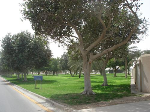 Dhahran Lifestyles Tour (9)