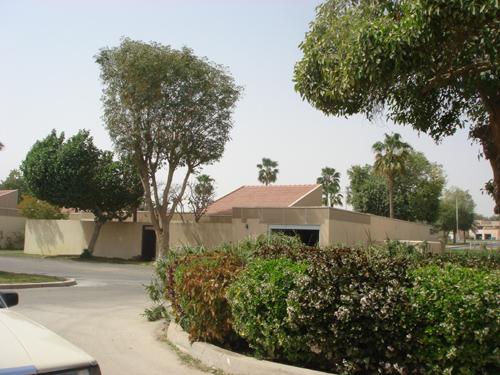 Dhahran Lifestyles Tour (13)