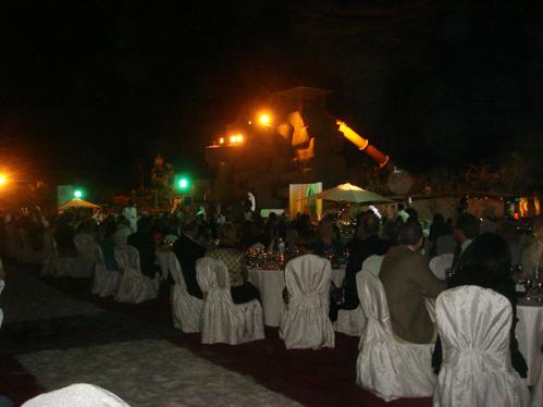 SAEA  Dinner (8)