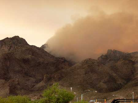 Sabino Area Fire