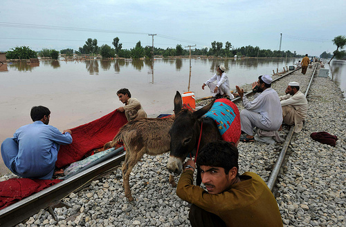 2010 Pakistan Floods (27)
