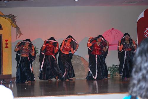 Rhythms of Rajasthan (6)