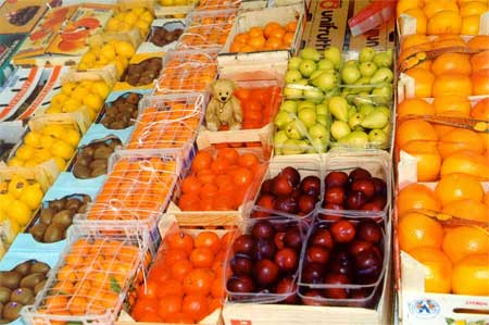 Favorite Fruit