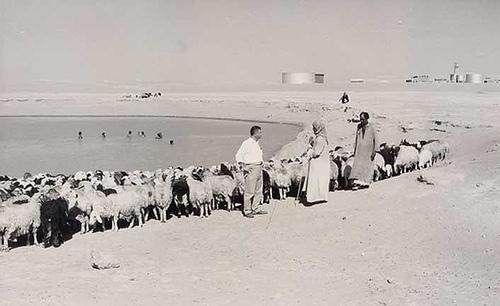 Turaif Swimming Hole – 1952